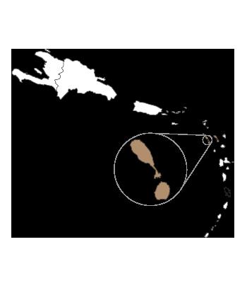 St. Kitts & Nevis