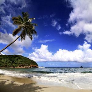 Dominica Improves CBI program