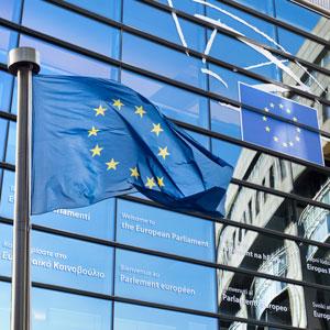 Mandatory Checks at External EU Borders made Possible