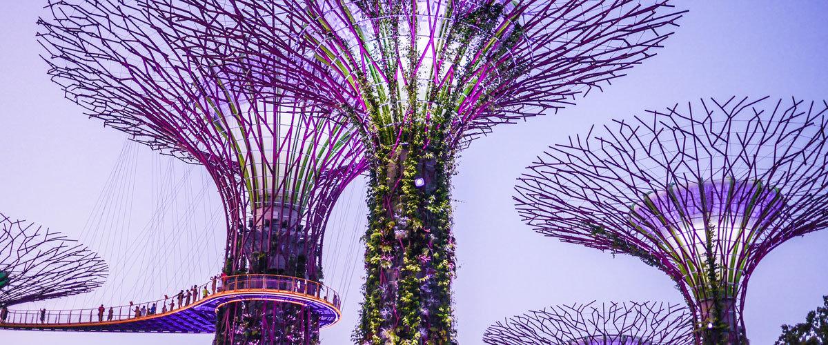 Singapore's Passport Pride
