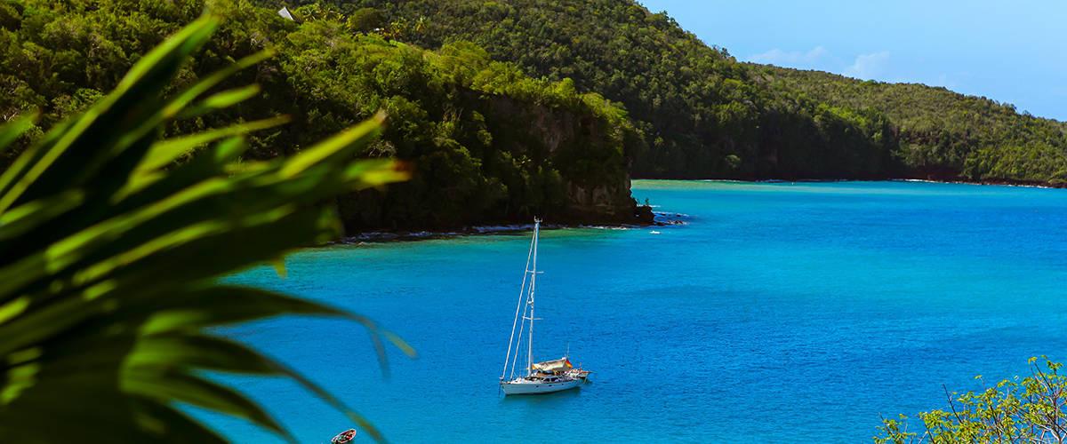 Saint Lucia Launches Virtual Citizenship Application Process
